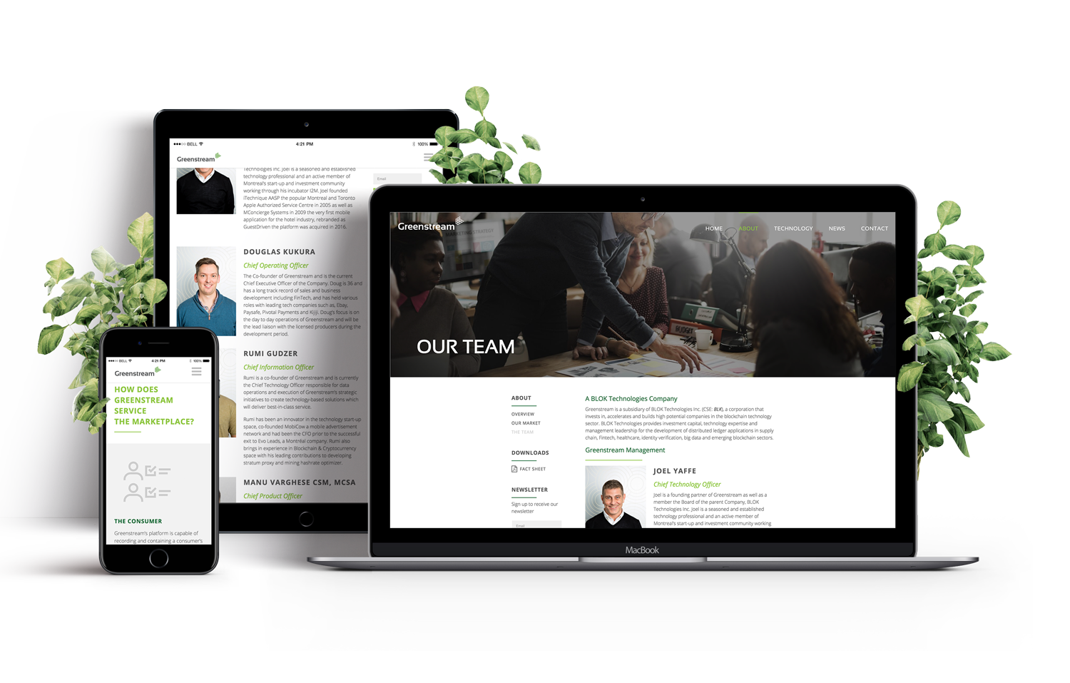 HOVR Marketing Greenstream Team About Page Web Design Display